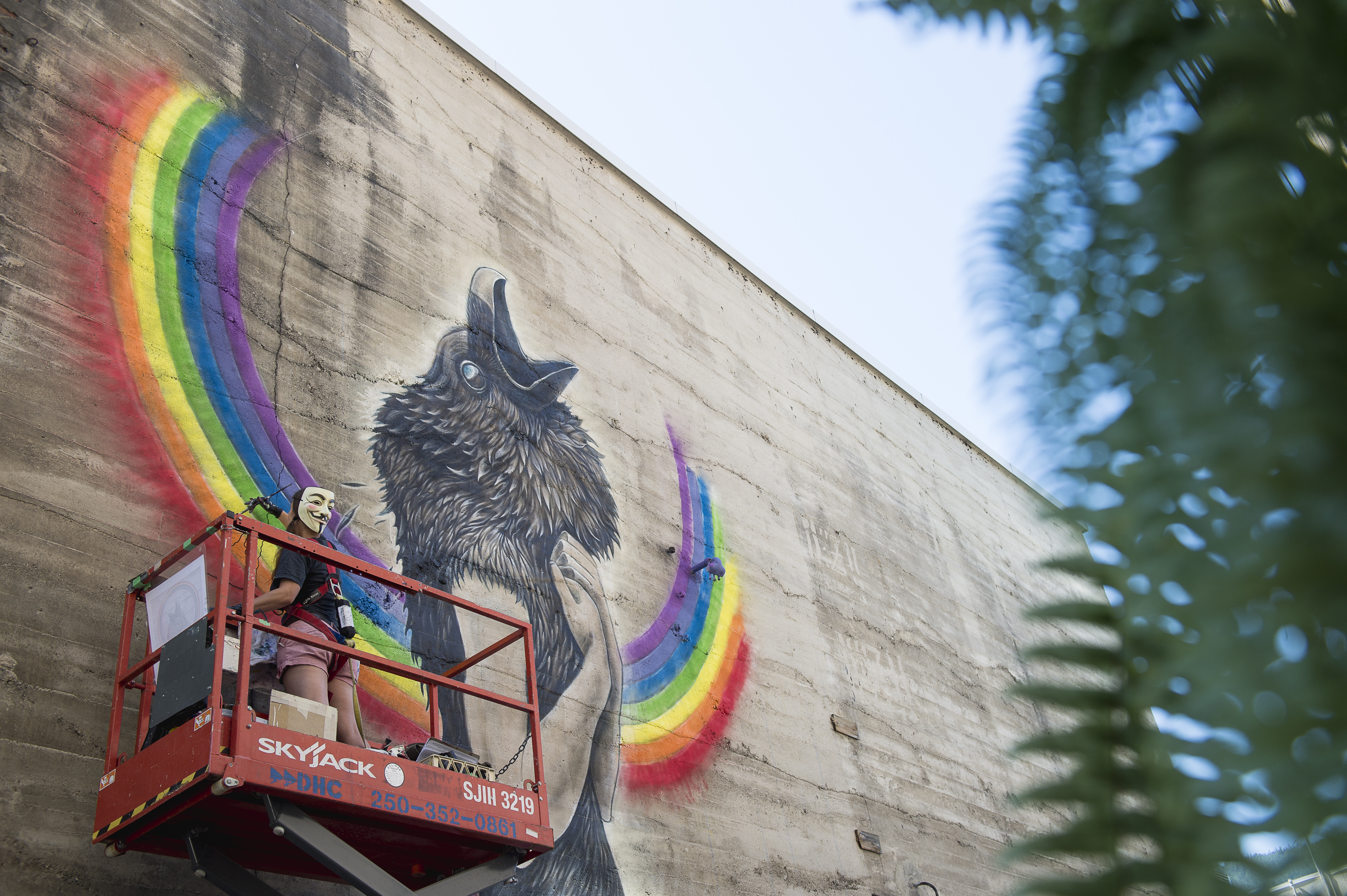 Nelson Mural Festival issues call for artists - My Nelson Now